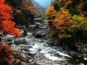 紅葉スポット みたらい渓谷