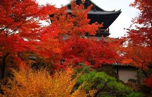 京都 紅葉スポット 南禅寺