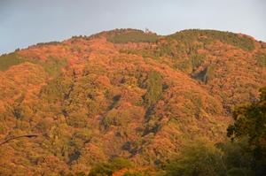 京都 紅葉スポット 比叡山