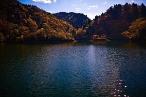 滋賀県 紅葉スポット 淡海湖