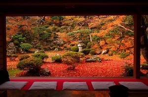 滋賀県 紅葉スポット 清瀧寺