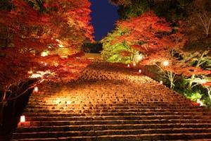 京都 紅葉スポット 神護寺