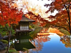 紅葉スポット 紅葉渓庭園