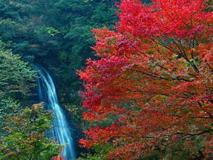 紅葉スポット 阿瀬渓谷