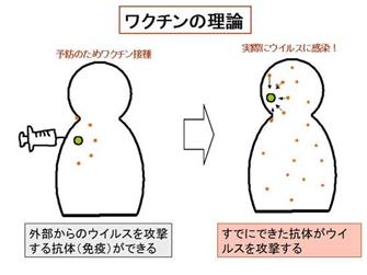 インフルエンザ予防接種 注意点