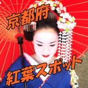 京都府 紅葉スポット