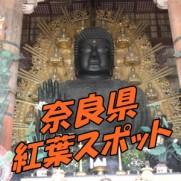奈良県 紅葉スポット