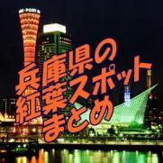 神戸 紅葉