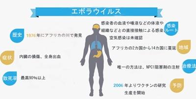 エボラ出血熱 感染ルート