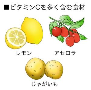 紫外線防止食材1