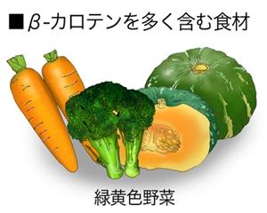 紫外線防止食材3