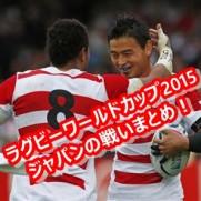ラグビーワールドカップ2015 日本 動画