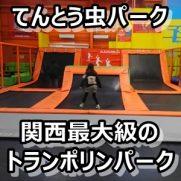 大阪 トランポリンパーク てんとう虫パーク